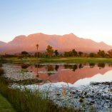 George golf course